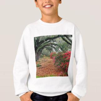 Trees Azaleas Oaks Magnolia Charleston Sweatshirt