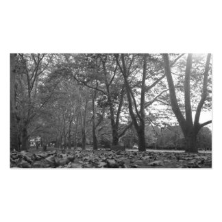 Trees Black and White Business Card