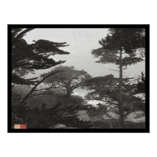 Trees - Carmel By The Sea, California Poster