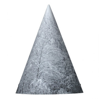 Trees Covered in Snow and Ice. Party Hat