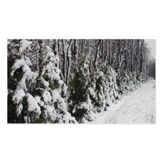 Trees Dressed In Snow Business Card