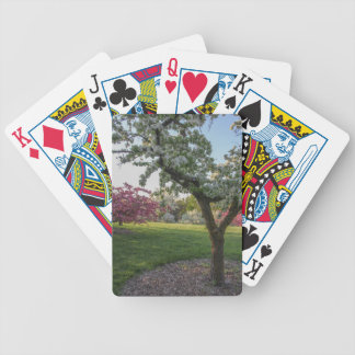 Trees Flower in the Spring Bicycle Playing Cards