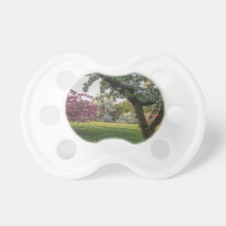 Trees Flower in the Spring Pacifier
