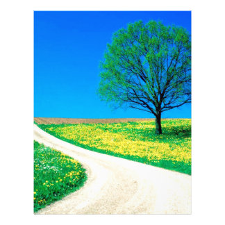 Trees Flowers Spring Road Letterhead