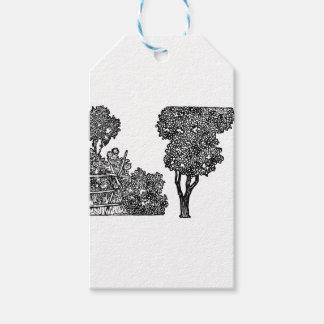 Trees Illustration Gift Tags
