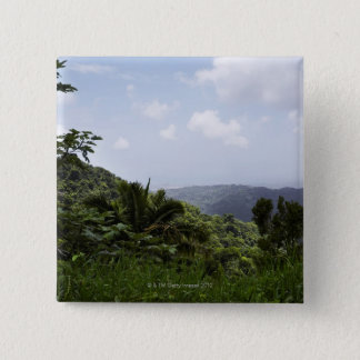 Trees in a rainforest, El Yunque Rainforest, 2 Inch Square Button