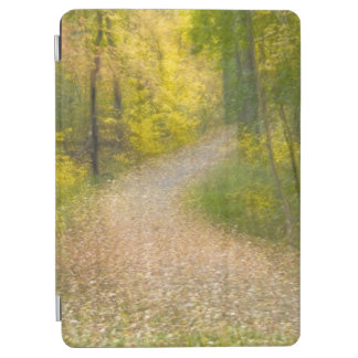 Trees in Autumn Colors and Leaf-Covered Pathway iPad Air Cover