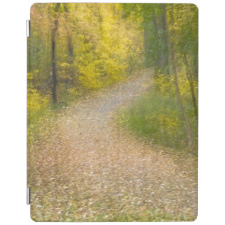 Trees in Autumn Colors and Leaf-Covered Pathway iPad Cover