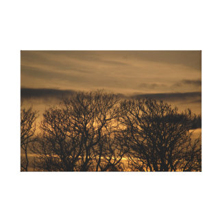 Trees In Burnt Gold Sunset Gallery Wrap Canvas
