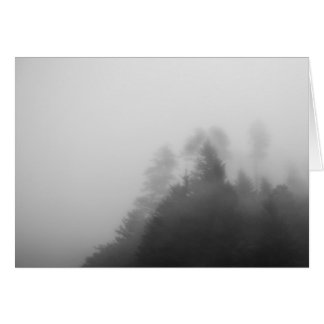 Trees in Heavy Fog Card