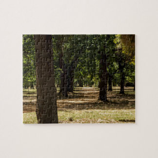 Trees in Park Jigsaw Puzzle