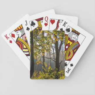 Trees In The Fog Playing Cards