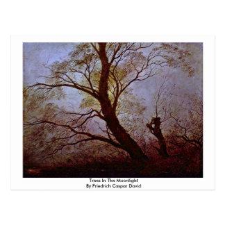Trees In The Moonlight By Friedrich Caspar David Postcard