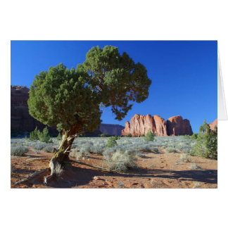 Trees Monument Valley Mesas Buttes Card