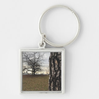Trees New York NYC Sunrise Central Park Skyline Keychain