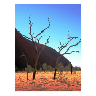 Trees of Ayers Rock Postcard