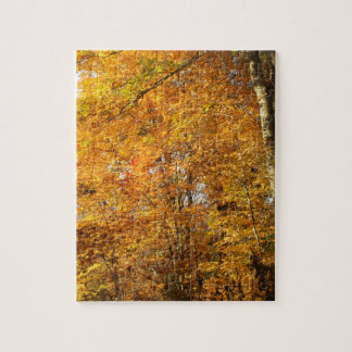 Trees of Fall Jigsaw Puzzle