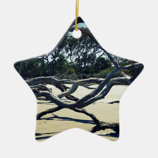 Trees on Jekyll Ceramic Star Ornament