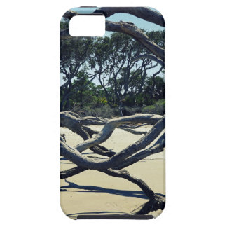 Trees on Jekyll iPhone 5 Case
