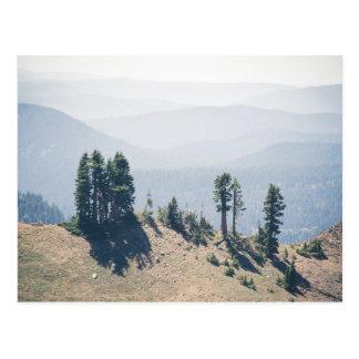 Trees Overlooking Lassen   Postcard