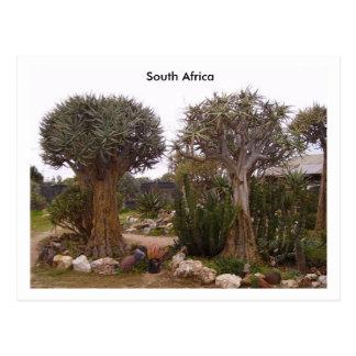 Trees Postcard