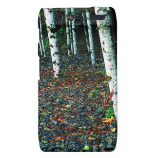 Trees Standing Room Only Birch Motorola Droid RAZR Case