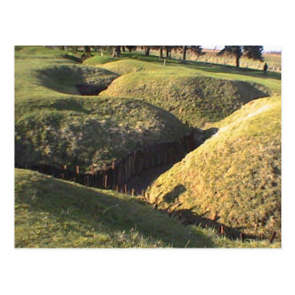 Trenches Newfoundland Park Postcard