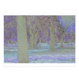 Tress in a park postcard