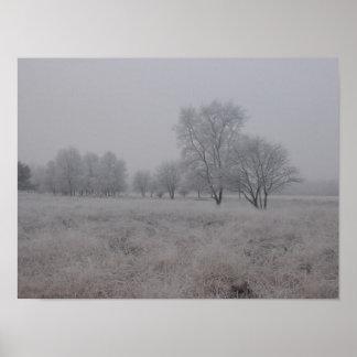 Tress in Field in Winter Poster