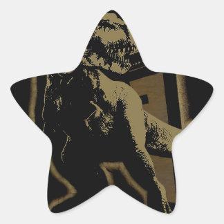 TREX BAND STAR STICKER