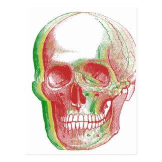 Tri-color Rasta Skull Postcard