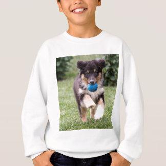 Tri Colored Australian Shepherd Pup Sweatshirt