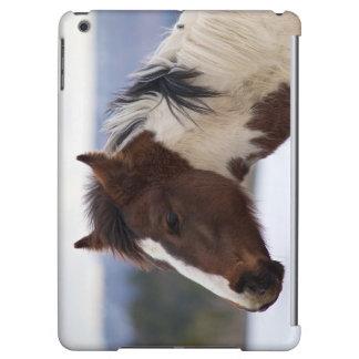 Tri-Colored Horse iPad Air Case