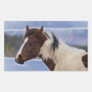 Tri-Colored Horse Sticker