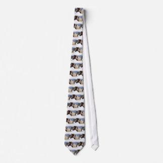 Tri-Colored Horse Tie