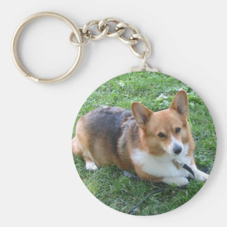 TRI-COLORED PEM IN GRASS KEYCHAIN
