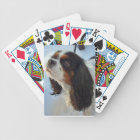 Tri-Coloured Cavalier Spaniel Playing Cards