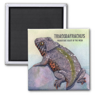 Triadobatrachus Magnet