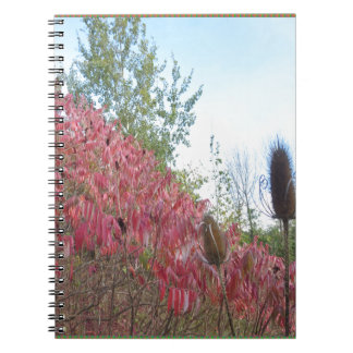 Triangle Colorful Nature Print Goodluck warm fall Notebook