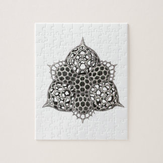 triangles jigsaw puzzle