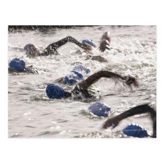 Triathletes competing in swim leg of triathlon. postcard