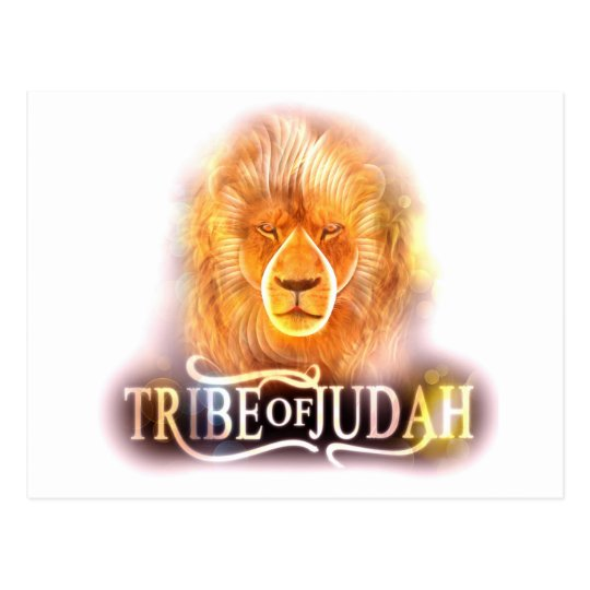 Tribe of Judah Post Card1 Postcard