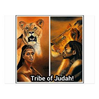 Tribe of Judah Postcard