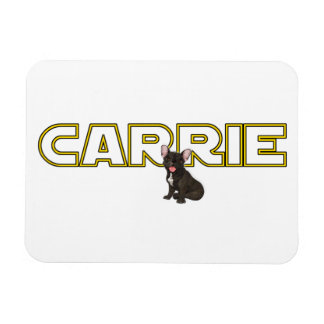 Tribute to Carrie Magnet