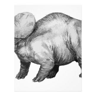 triceratops5 letterhead