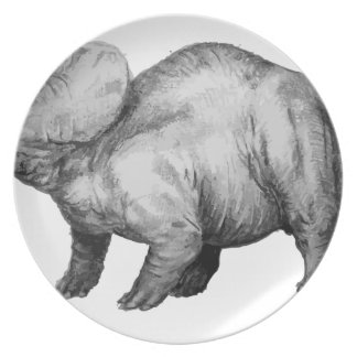 triceratops5 plate