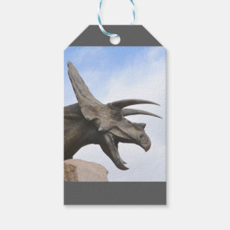 Triceratops Dinosaur Pack Of Gift Tags