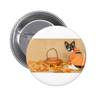 Trick or Treat Chihuahua Dog 2 Inch Round Button