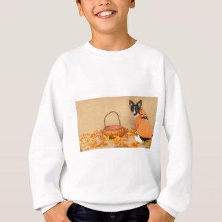 Trick or Treat Chihuahua Dog Sweatshirt