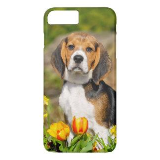 Tricolor Beagle Puppy Cute Portrait, Phonecase iPhone 7 Plus Case